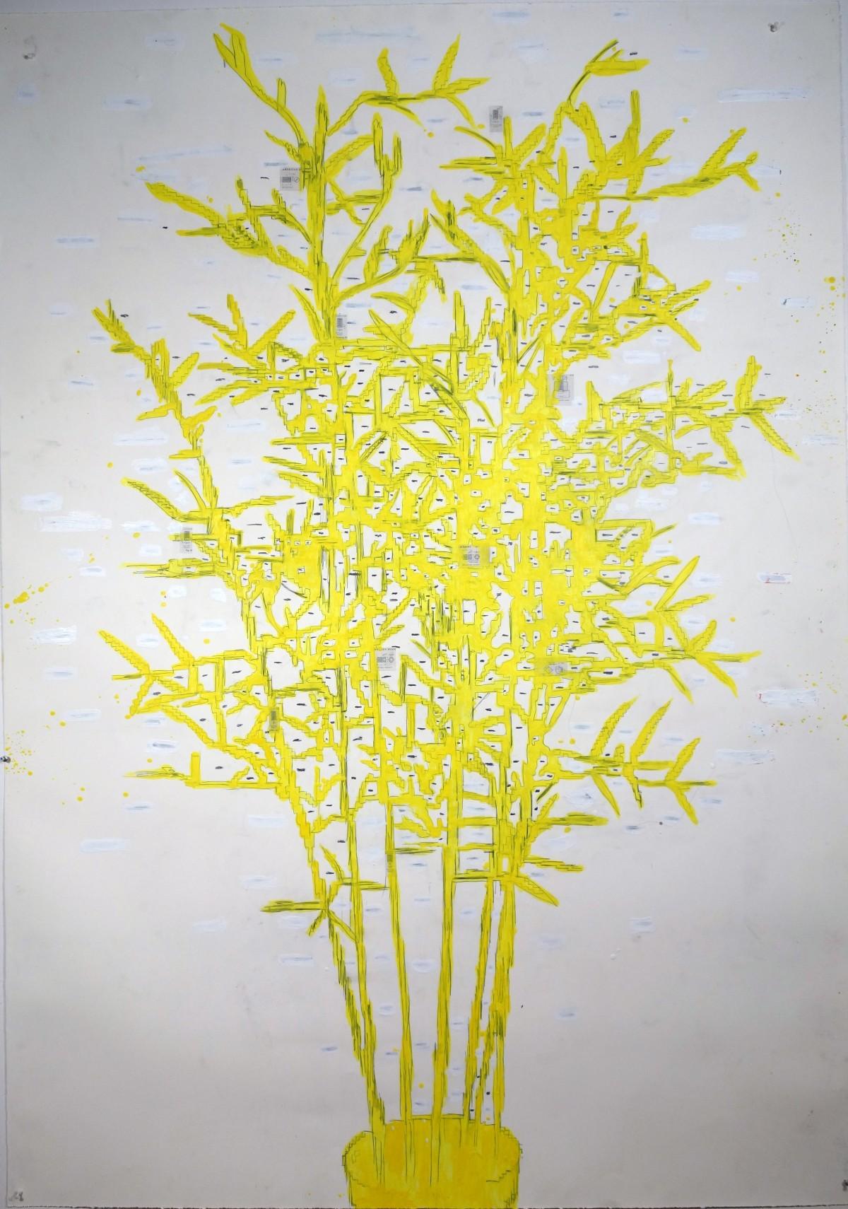 Ania Soliman - bamboo-DSC02694