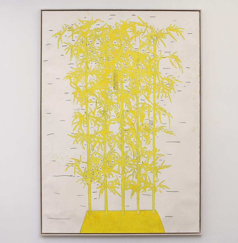 Ania Soliman - bamboo VHA101714KD